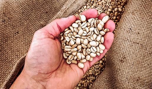 Handmade Kaffee